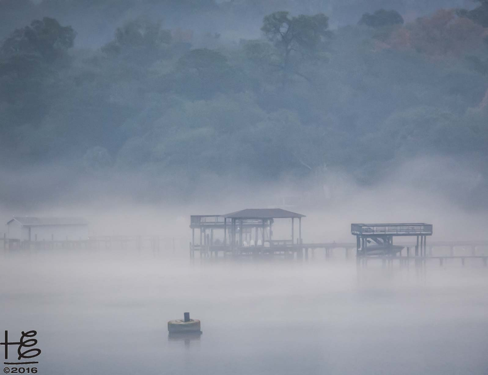 Foggy River by Holly Elmore